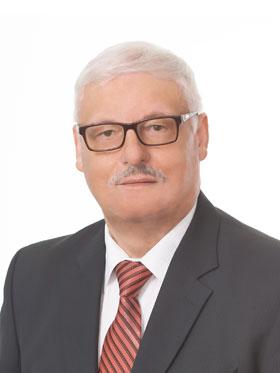 Павел Кузьмич Гуринов